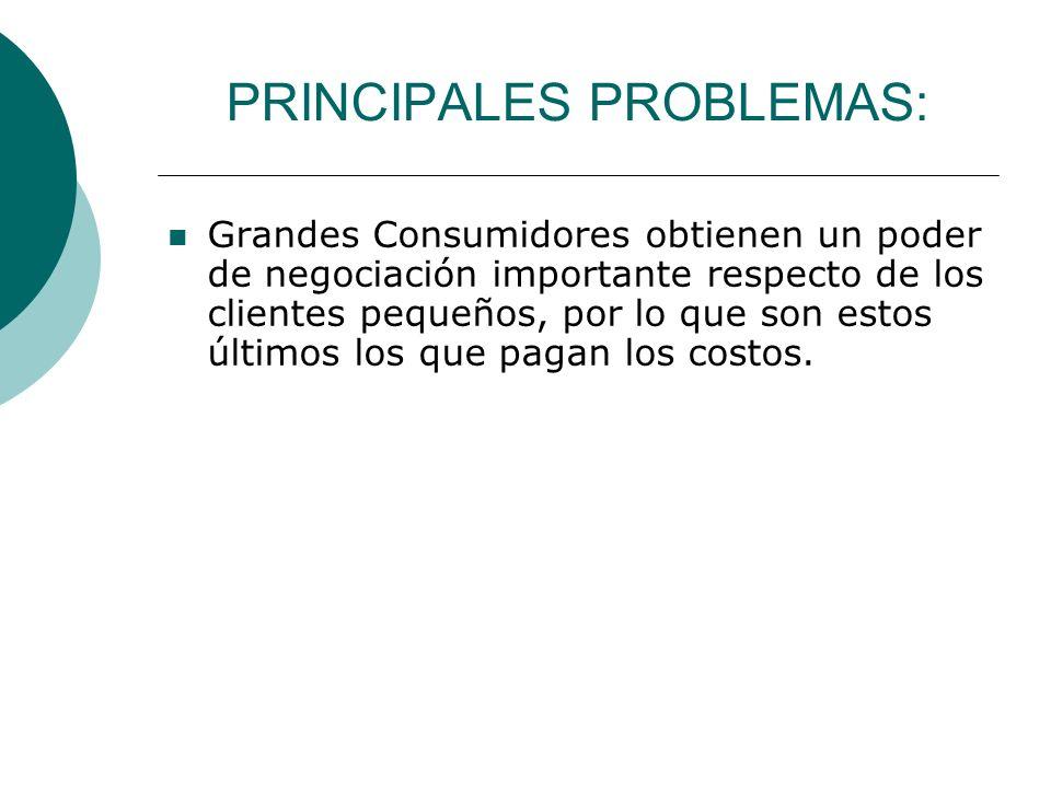PRINCIPALES PROBLEMAS: Grandes Consumidores obtienen un poder de negociación importante respecto de los clientes pequeños, por lo que son estos último