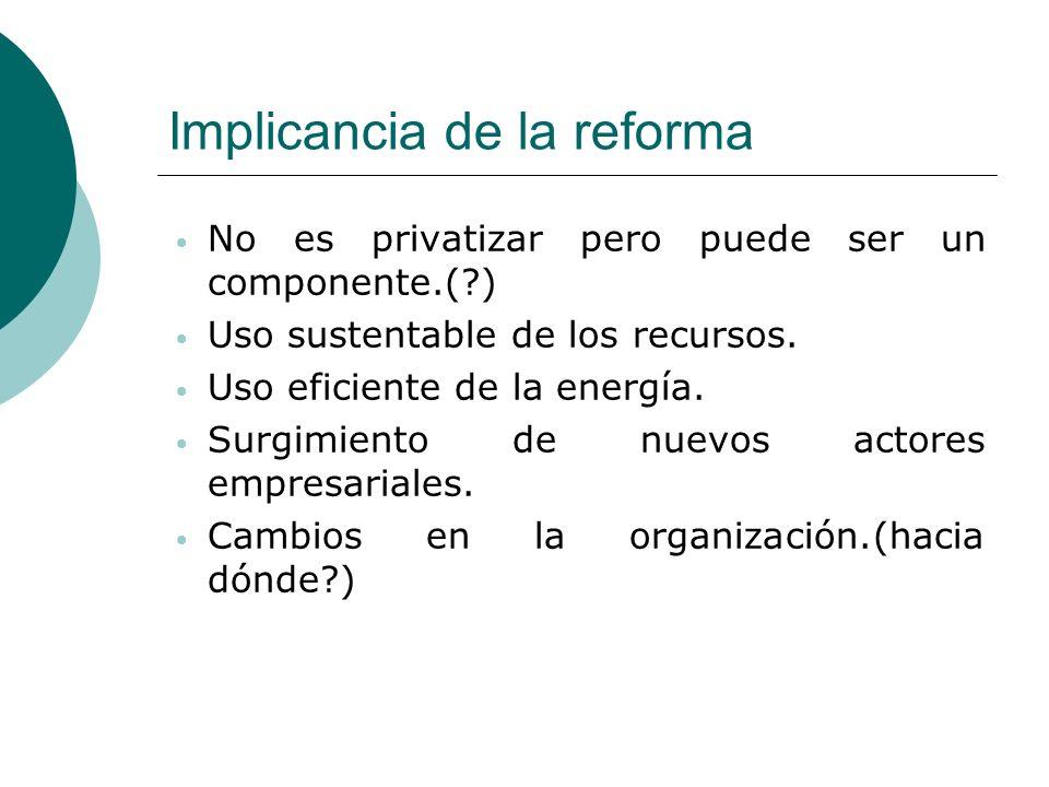 Implicancia de la reforma No es privatizar pero puede ser un componente.(?) Uso sustentable de los recursos. Uso eficiente de la energía. Surgimiento