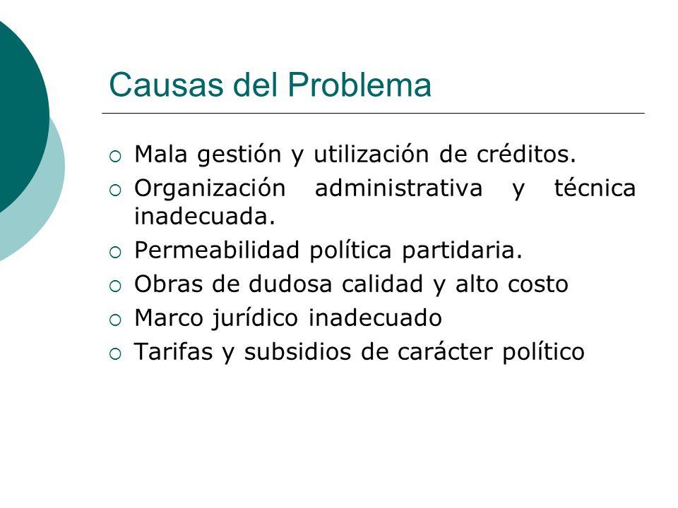 Causas del Problema Mala gestión y utilización de créditos. Organización administrativa y técnica inadecuada. Permeabilidad política partidaria. Obras