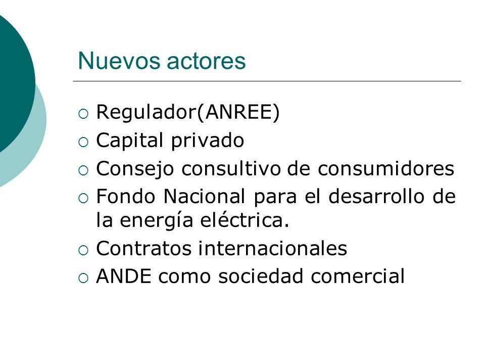 Nuevos actores Regulador(ANREE) Capital privado Consejo consultivo de consumidores Fondo Nacional para el desarrollo de la energía eléctrica. Contrato