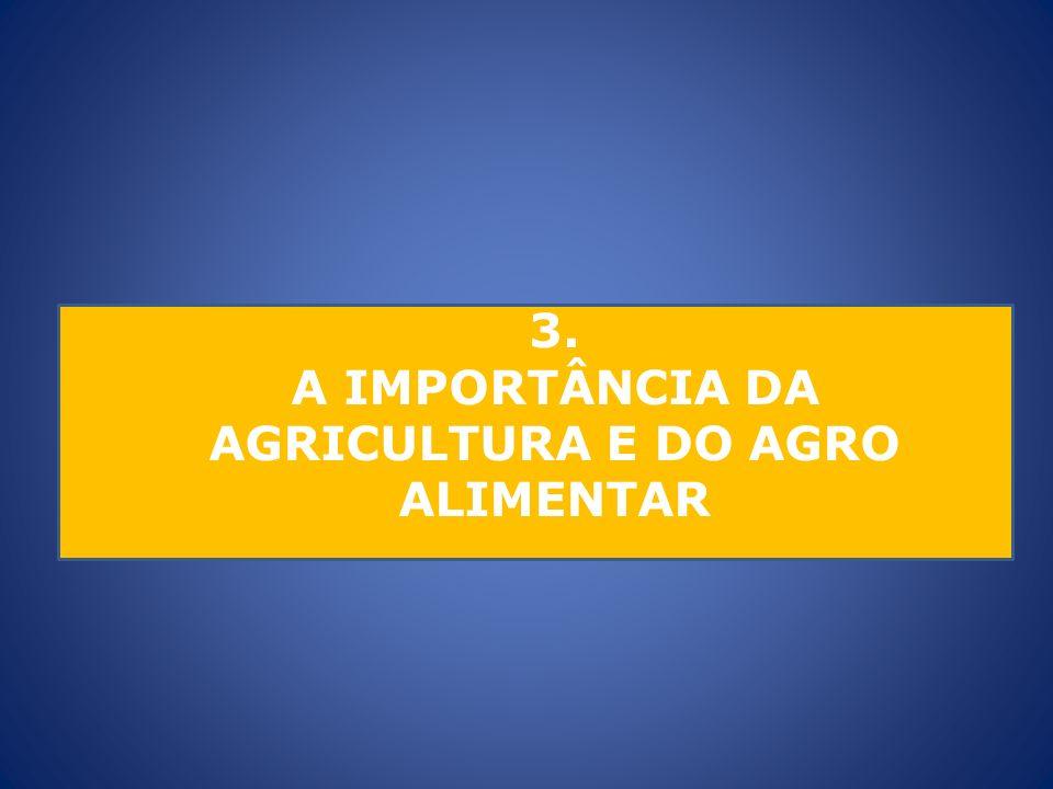 3. A IMPORTÂNCIA DA AGRICULTURA E DO AGRO ALIMENTAR