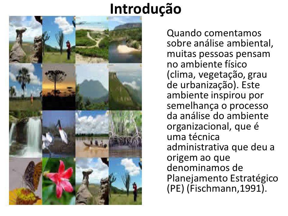 Introdução Quando comentamos sobre análise ambiental, muitas pessoas pensam no ambiente físico (clima, vegetação, grau de urbanização).