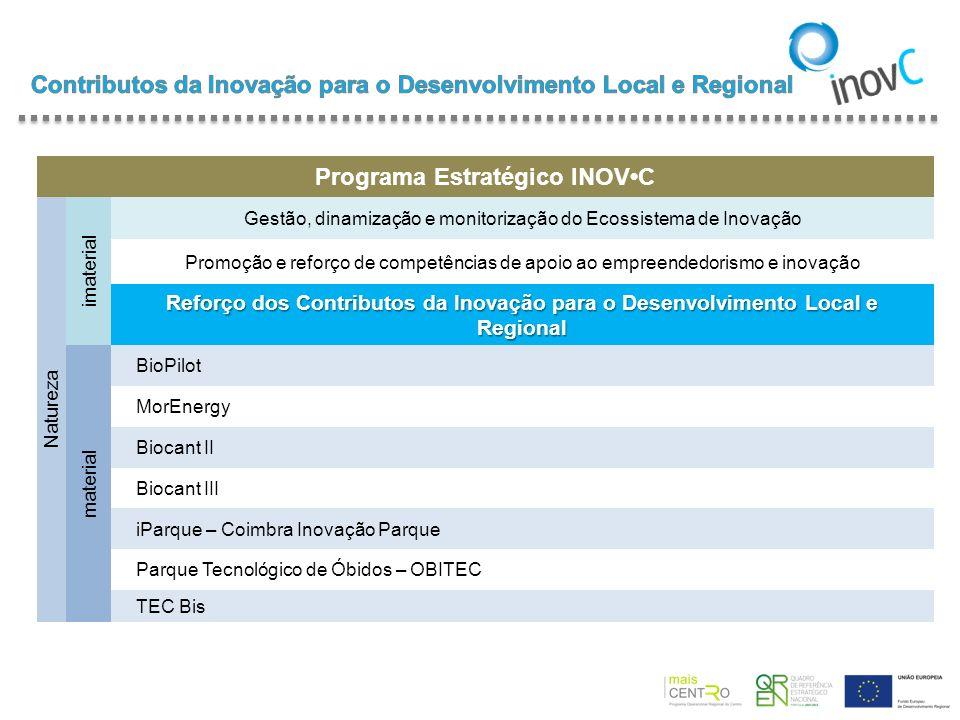Programa Estratégico INOVC Natureza imaterial Gestão, dinamização e monitorização do Ecossistema de Inovação Promoção e reforço de competências de apo