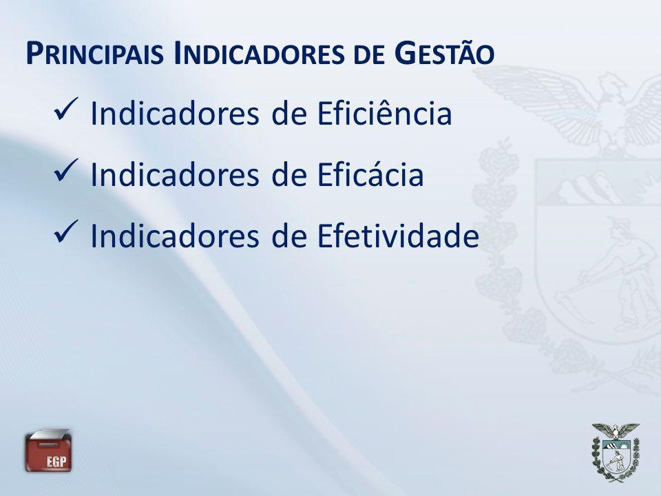 P RINCIPAIS I NDICADORES DE G ESTÃO Indicadores de Eficiência Indicadores de Eficácia Indicadores de Efetividade