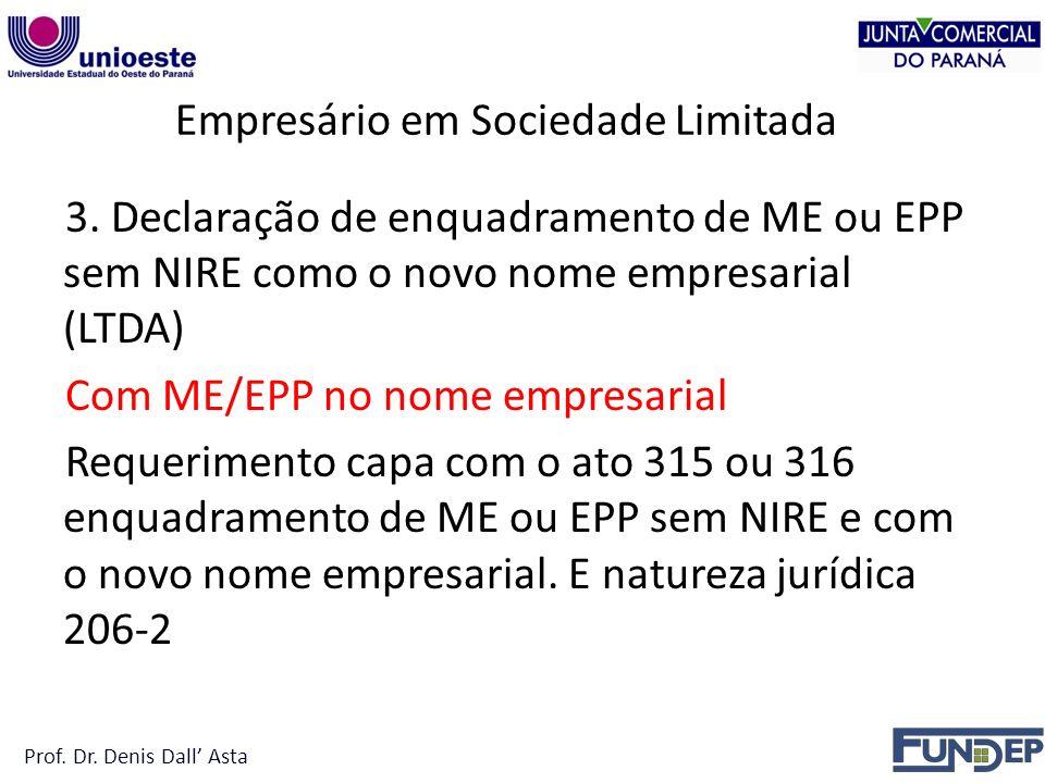 Empresário em Sociedade Limitada 3.
