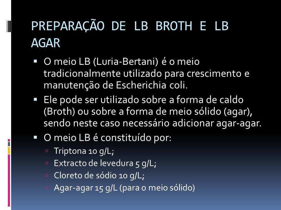 PREPARAÇÃO DE LB BROTH E LB AGAR O meio LB (Luria-Bertani) é o meio tradicionalmente utilizado para crescimento e manutenção de Escherichia coli. Ele
