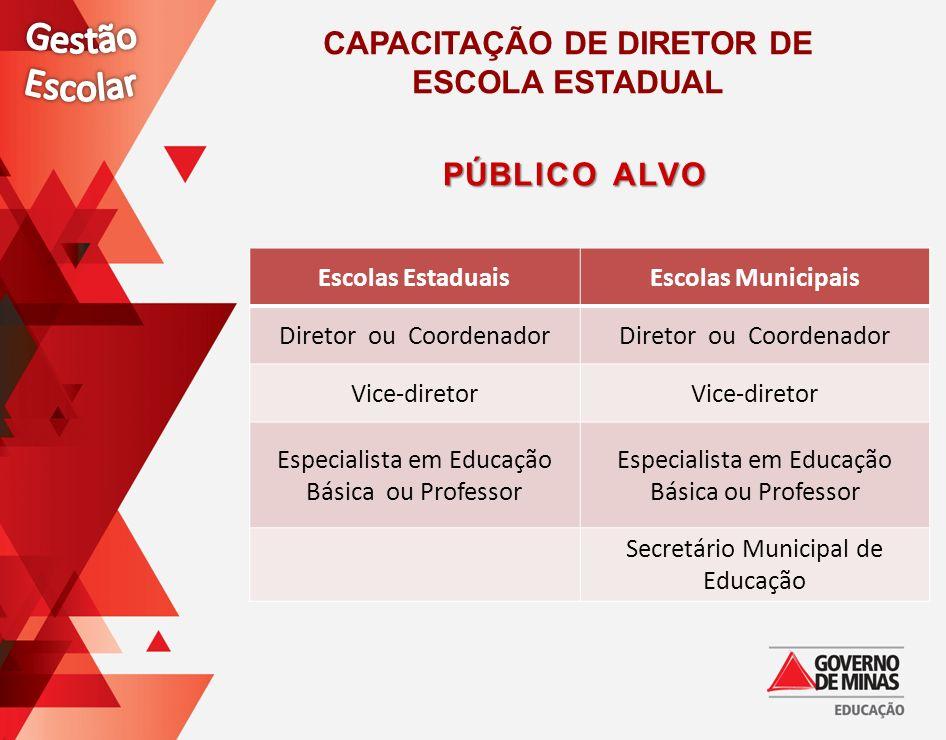 Escolas EstaduaisEscolas Municipais Diretor ou Coordenador Vice-diretor Especialista em Educação Básica ou Professor Secretário Municipal de Educação