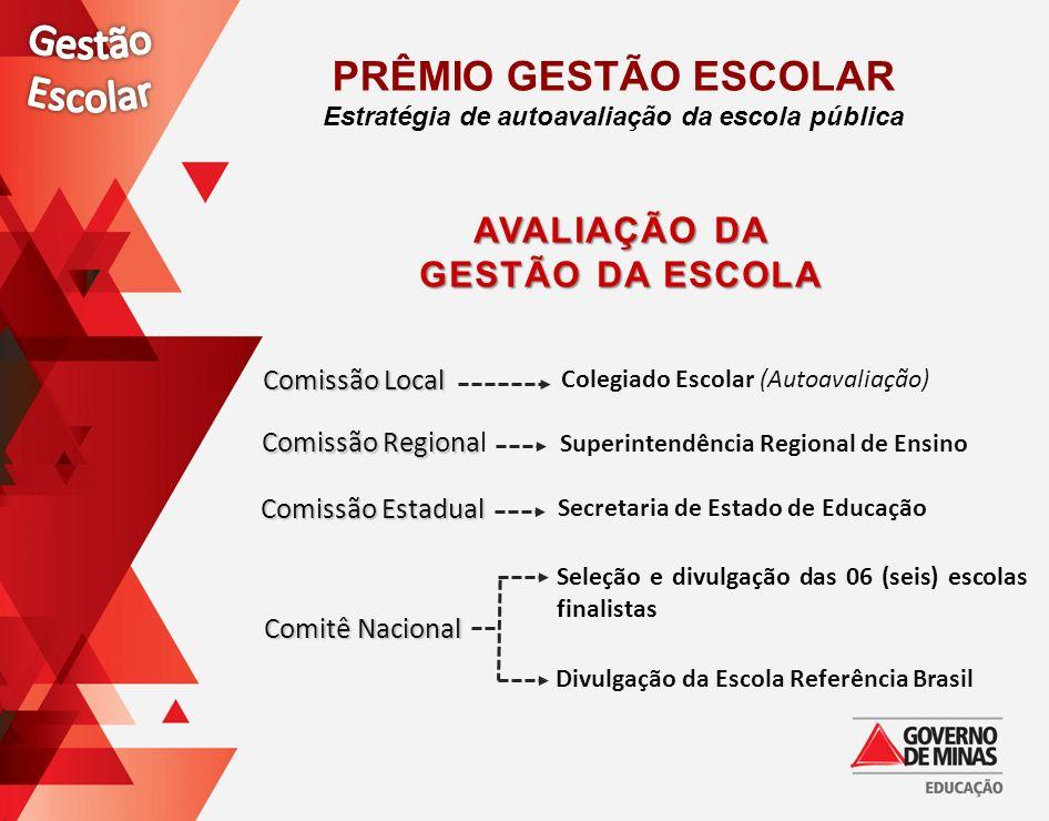 Comissão Local Comissão Regiona Comissão Regional Comissão Estadual Comitê Nacional Superintendência Regional de Ensino Colegiado Escolar (Autoavaliaç