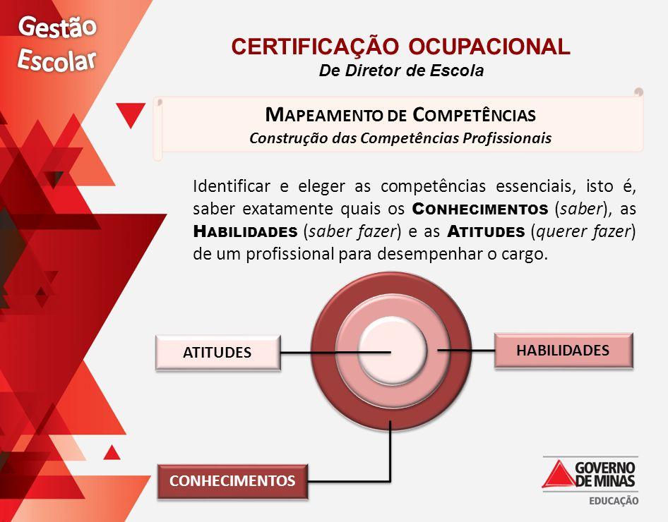 M APEAMENTO DE C OMPETÊNCIAS Construção das Competências Profissionais Identificar e eleger as competências essenciais, isto é, saber exatamente quais