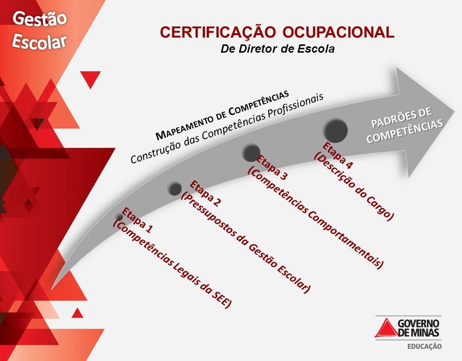 M APEAMENTO DE C OMPETÊNCIAS Construção das Competências Profissionais PADRÕES DE COMPETÊNCIAS CERTIFICAÇÃO OCUPACIONAL De Diretor de Escola