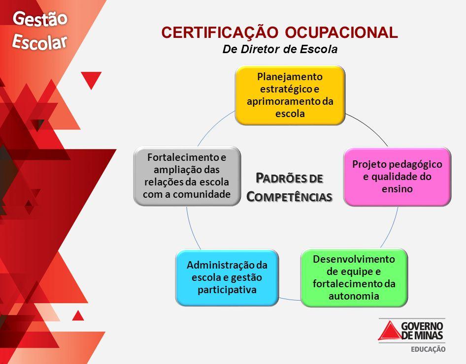 P ADRÕES DE C OMPETÊNCIAS CERTIFICAÇÃO OCUPACIONAL De Diretor de Escola