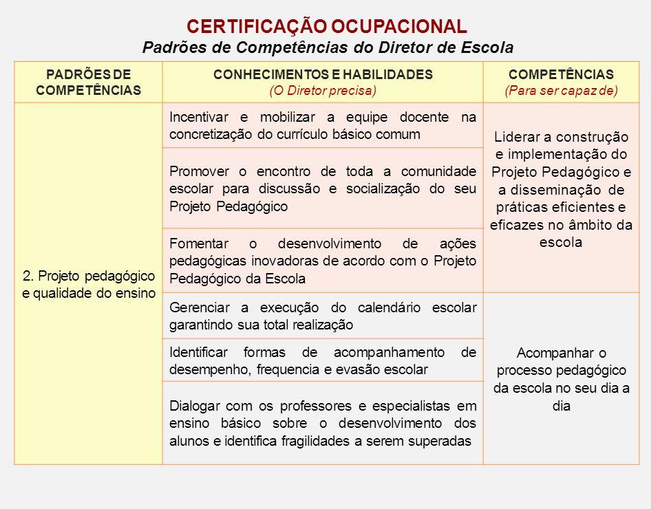 PADRÕES DE COMPETÊNCIAS CONHECIMENTOS E HABILIDADES (O Diretor precisa) COMPETÊNCIAS (Para ser capaz de) 2. Projeto pedagógico e qualidade do ensino I