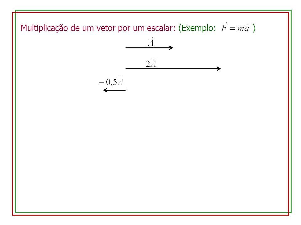 Multiplicação de um vetor por um escalar: (Exemplo: )