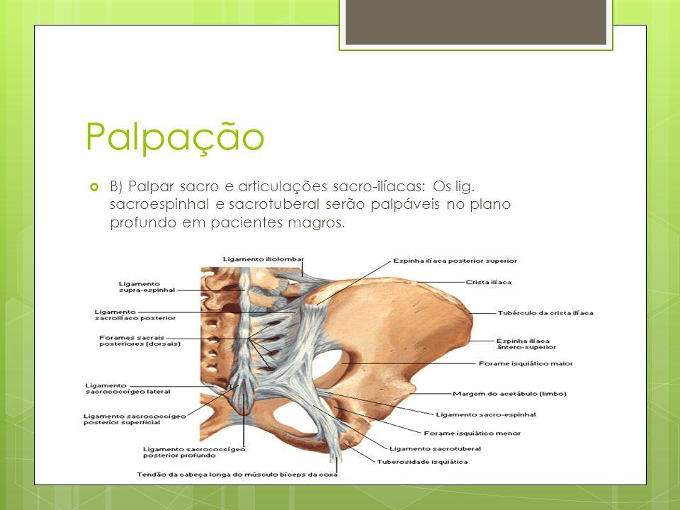 Palpação Normamente, o movimento da articulação sacroilíaca enquanto o quadril ipsilateral é fletido faz a espinha ilíaca mergulhar.