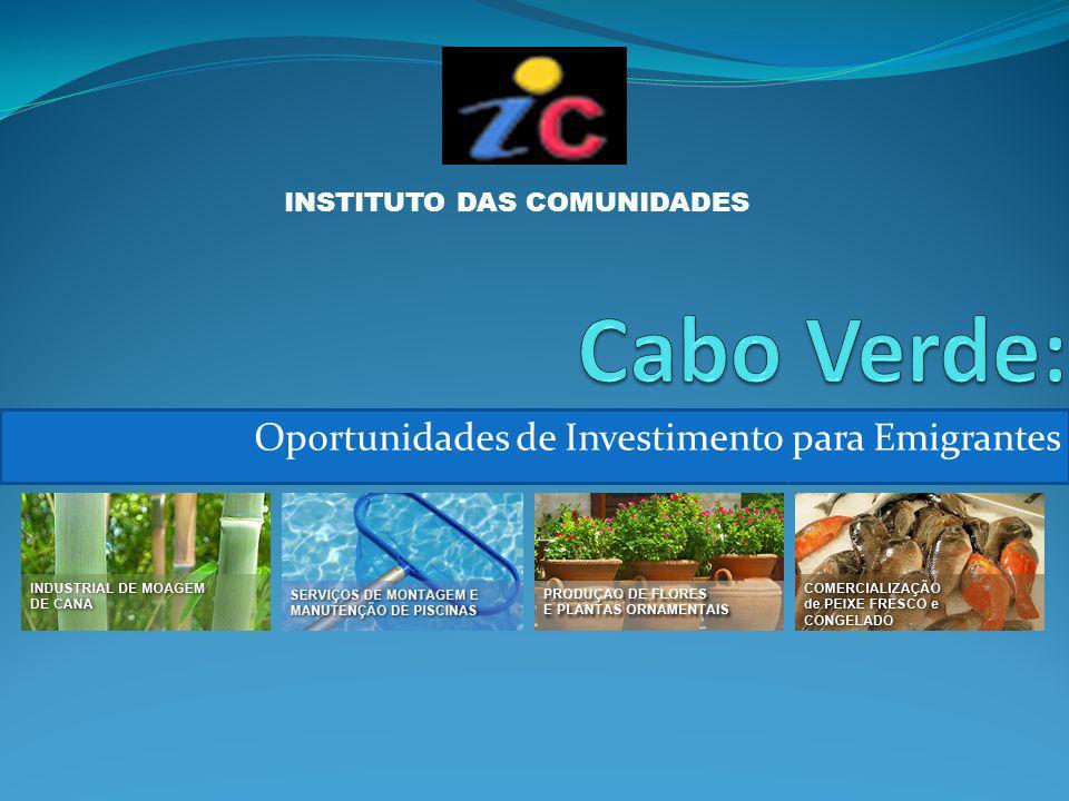 Oportunidades de Investimento para Emigrantes INSTITUTO DAS COMUNIDADES