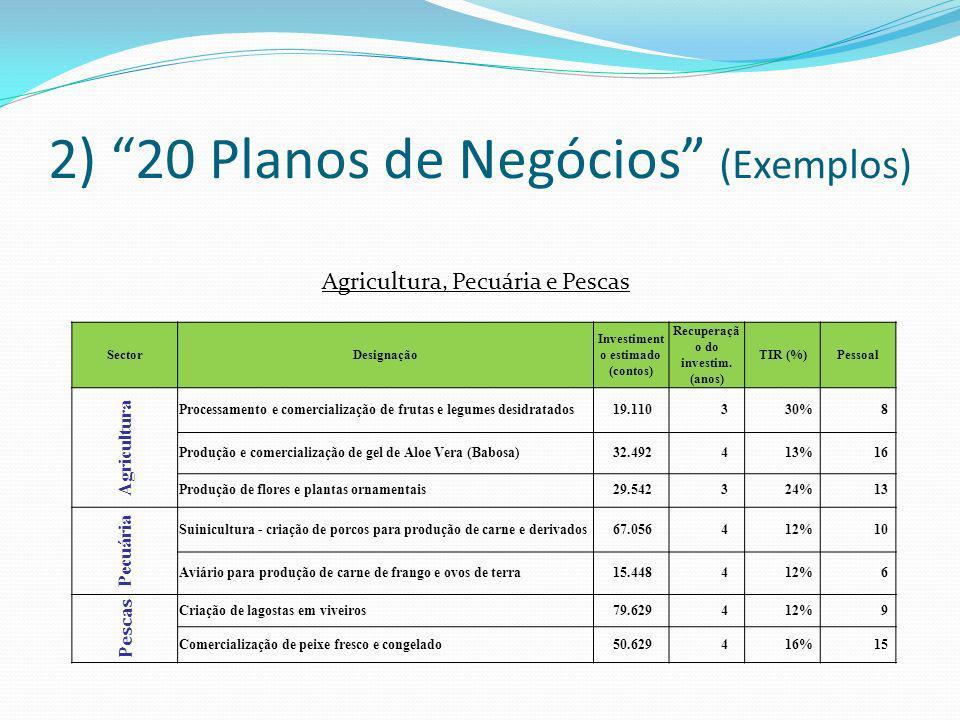2) 20 Planos de Negócios (Exemplos) Agricultura, Pecuária e Pescas SectorDesignação Investiment o estimado (contos) Recuperaçã o do investim. (anos) T