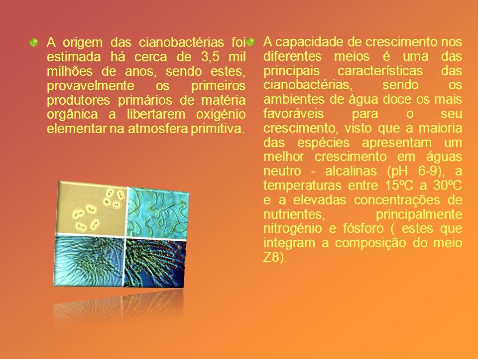 Os factores ambientais parecem afectar o seu crescimento, assim como a produção de cianotoxinas (toxinas produzidas pelas cianobactérias).