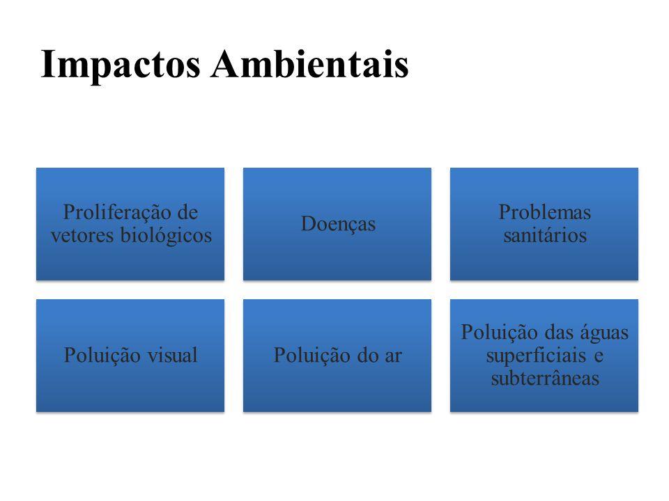 Impactos Ambientais Proliferação de vetores biológicos Doenças Problemas sanitários Poluição visualPoluição do ar Poluição das águas superficiais e su
