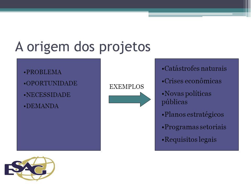 A origem dos projetos PROBLEMA OPORTUNIDADE NECESSIDADE DEMANDA Catástrofes naturais Crises econômicas Novas políticas públicas Planos estratégicos Programas setoriais Requisitos legais EXEMPLOS