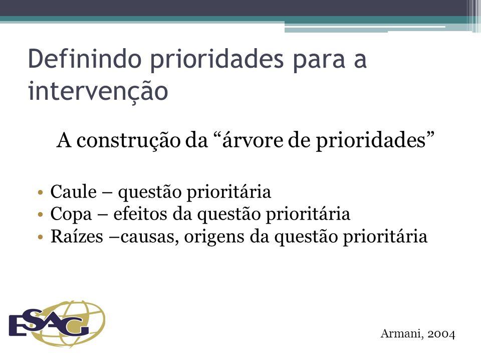 Definindo prioridades para a intervenção A construção da árvore de prioridades Caule – questão prioritária Copa – efeitos da questão prioritária Raízes –causas, origens da questão prioritária Armani, 2004
