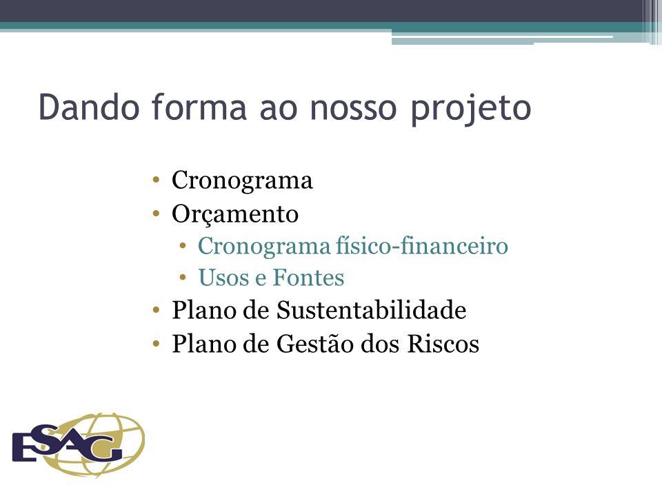Dando forma ao nosso projeto Cronograma Orçamento Cronograma físico-financeiro Usos e Fontes Plano de Sustentabilidade Plano de Gestão dos Riscos