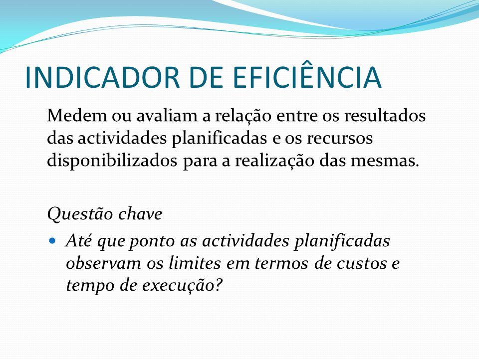 INDICADOR DE EFICIÊNCIA Medem ou avaliam a relação entre os resultados das actividades planificadas e os recursos disponibilizados para a realização das mesmas.