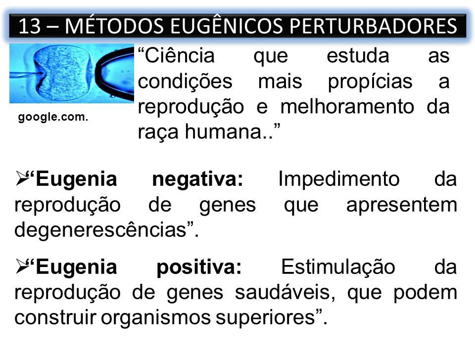 13 – MÉTODOS EUGÊNICOS PERTURBADORES Ciência que estuda as condições mais propícias a reprodução e melhoramento da raça humana.. Eugenia negativa: Imp