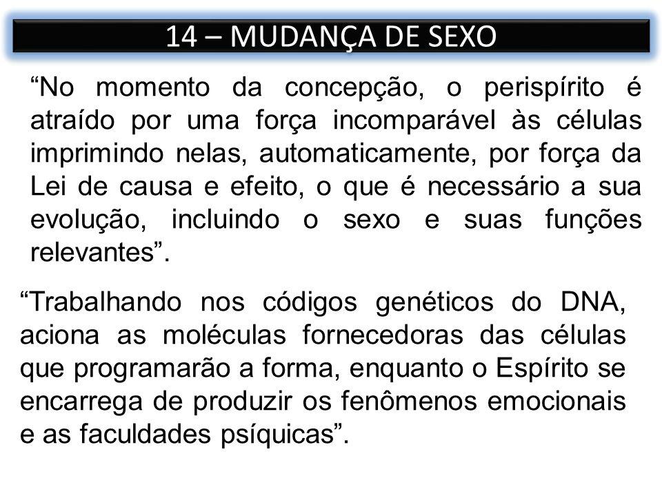 14 – MUDANÇA DE SEXO Trabalhando nos códigos genéticos do DNA, aciona as moléculas fornecedoras das células que programarão a forma, enquanto o Espíri