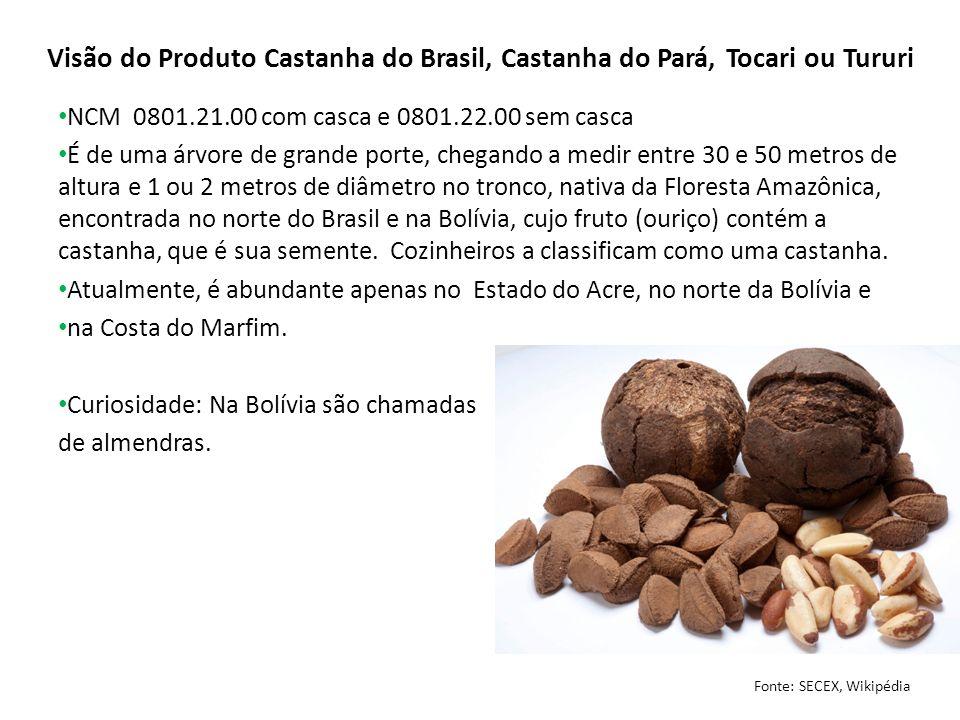 Visão do Produto Castanha do Brasil, Castanha do Pará, Tocari ou Tururi NCM 0801.21.00 com casca e 0801.22.00 sem casca É de uma árvore de grande port