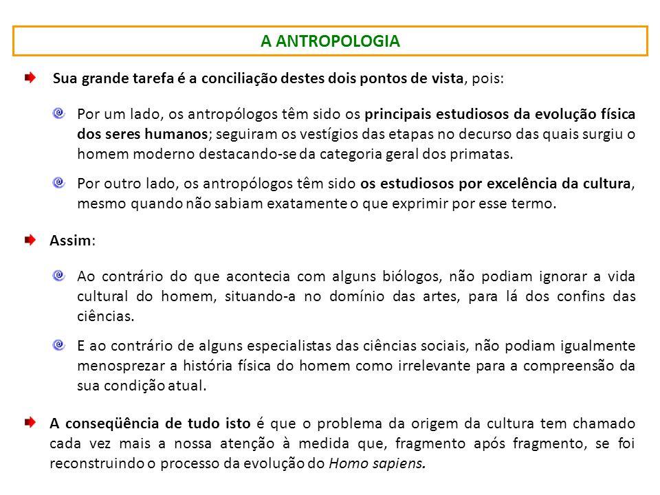 O DESENVOLVIMENTO DIALÉTICO DA CULTURA Introdução à Antropologia – 2011.1 Prof. Dr. Márcio Caniello