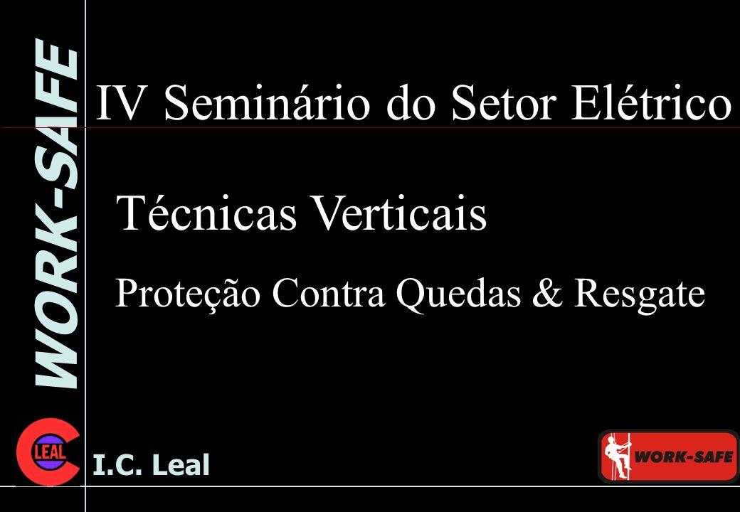 WORK-SAFE I.C. Leal IV Seminário do Setor Elétrico Técnicas Verticais Proteção Contra Quedas & Resgate