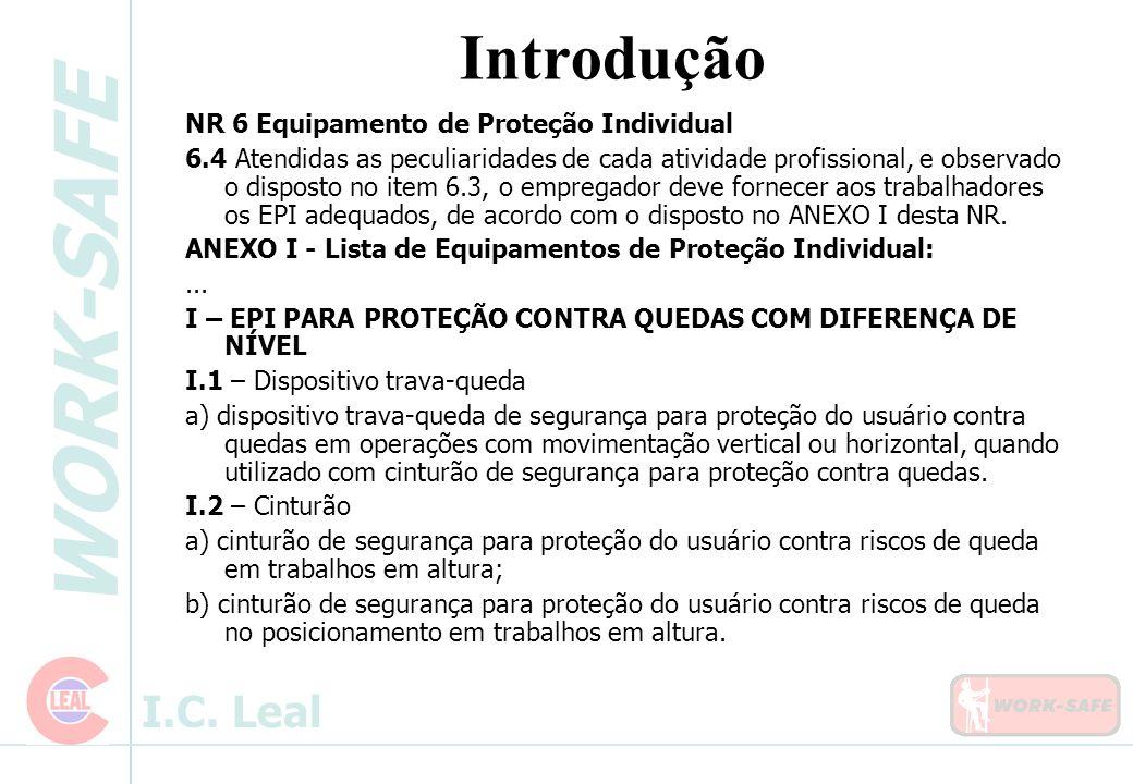 WORK-SAFE I.C. Leal Introdução NR 6 Equipamento de Proteção Individual 6.4 Atendidas as peculiaridades de cada atividade profissional, e observado o d