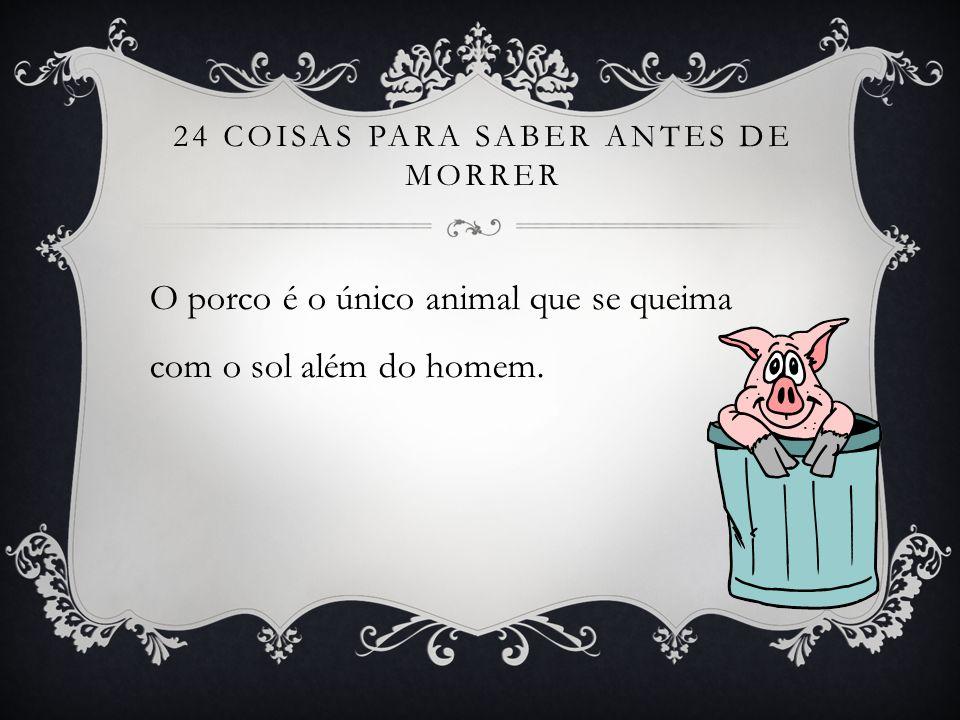 24 COISAS PARA SABER ANTES DE MORRER O porco é o único animal que se queima com o sol além do homem.
