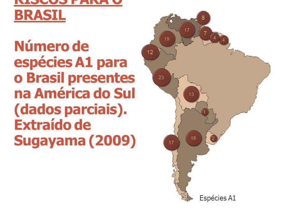 RISCOS PARA O BRASIL Número de espécies A1 para o Brasil presentes na América do Sul (dados parciais). Extraído de Sugayama (2009) Espécies A1 18 13 1