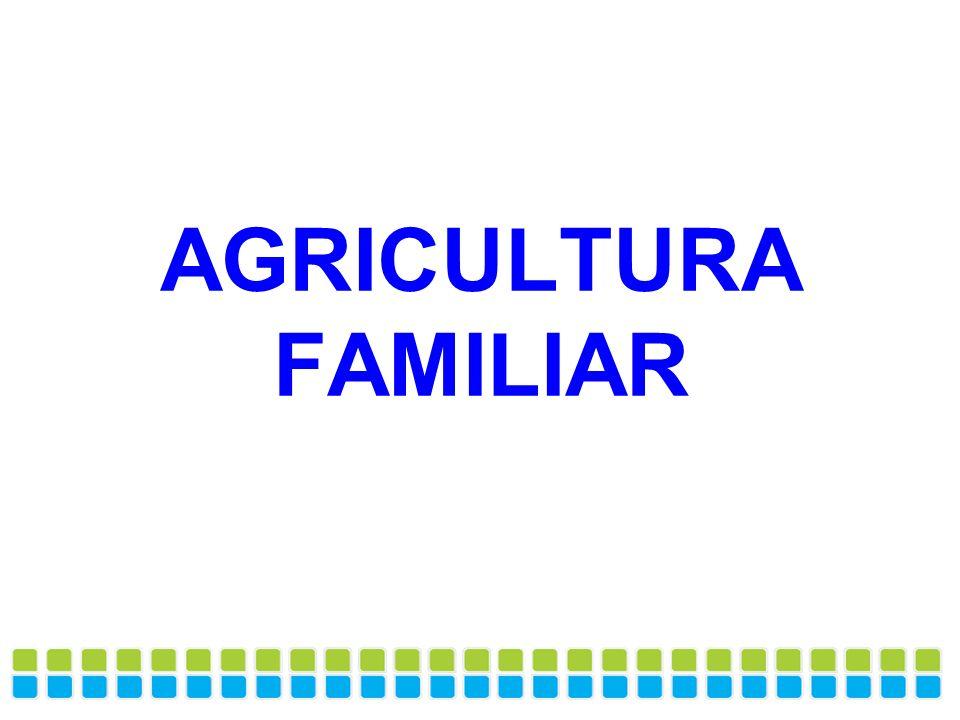 Categorias de gêneros alimentícios da compra da Agricultura Familiar para Alimentação Escolar *Orgânicos : identificação espontânea em 10 questionários