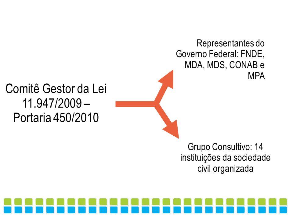 Comitê Gestor da Lei 11.947/2009 – Portaria 450/2010 Grupo Consultivo: 14 instituições da sociedade civil organizada Representantes do Governo Federal