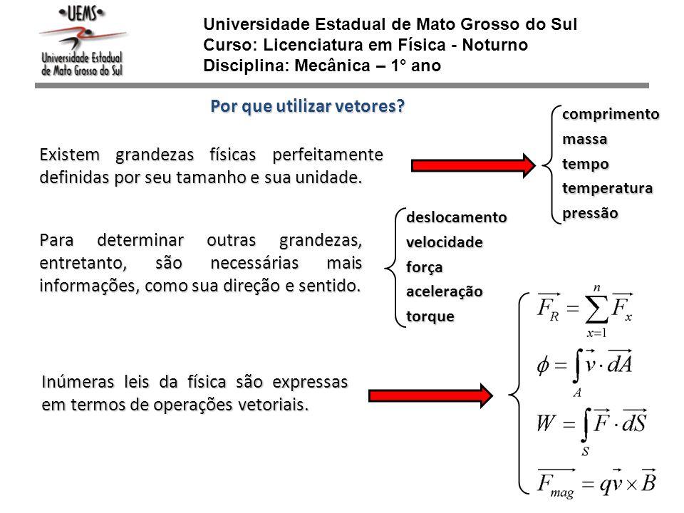 Universidade Estadual de Mato Grosso do Sul Curso: Licenciatura em Física - Noturno Disciplina: Mecânica – 1° ano Por que utilizar vetores? Para deter