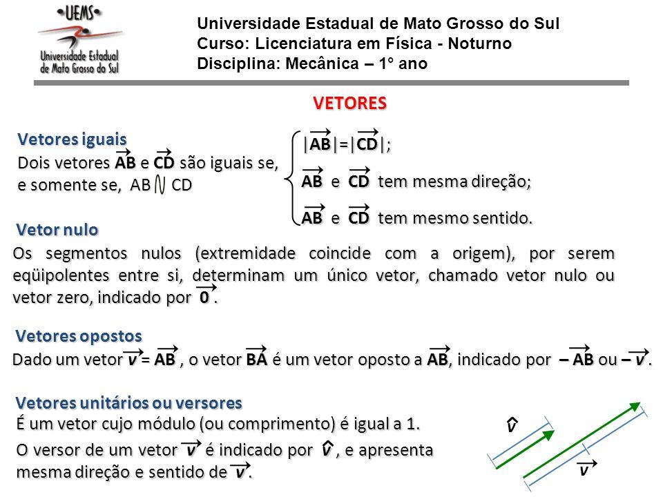 Universidade Estadual de Mato Grosso do Sul Curso: Licenciatura em Física - Noturno Disciplina: Mecânica – 1° ano VETORES Vetores iguais Dois vetores