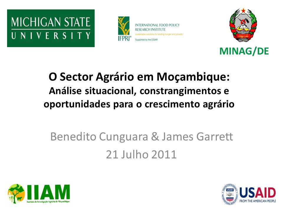 O Sector Agrário em Moçambique: Análise situacional, constrangimentos e oportunidades para o crescimento agrário Benedito Cunguara & James Garrett 21