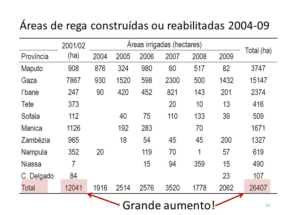 24 Áreas de rega construídas ou reabilitadas 2004-09 2001/02 (ha) Áreas irrigadas (hectares) Total (ha) Província200420052006200720082009 Maputo908876