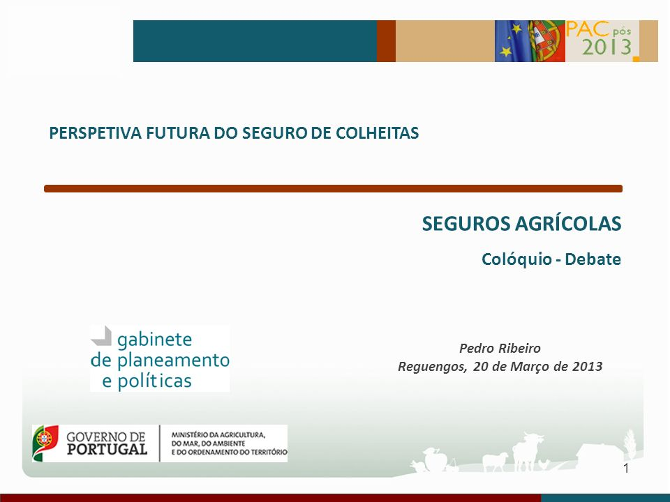 1 PERSPETIVA FUTURA DO SEGURO DE COLHEITAS SEGUROS AGRÍCOLAS Colóquio - Debate Pedro Ribeiro Reguengos, 20 de Março de 2013