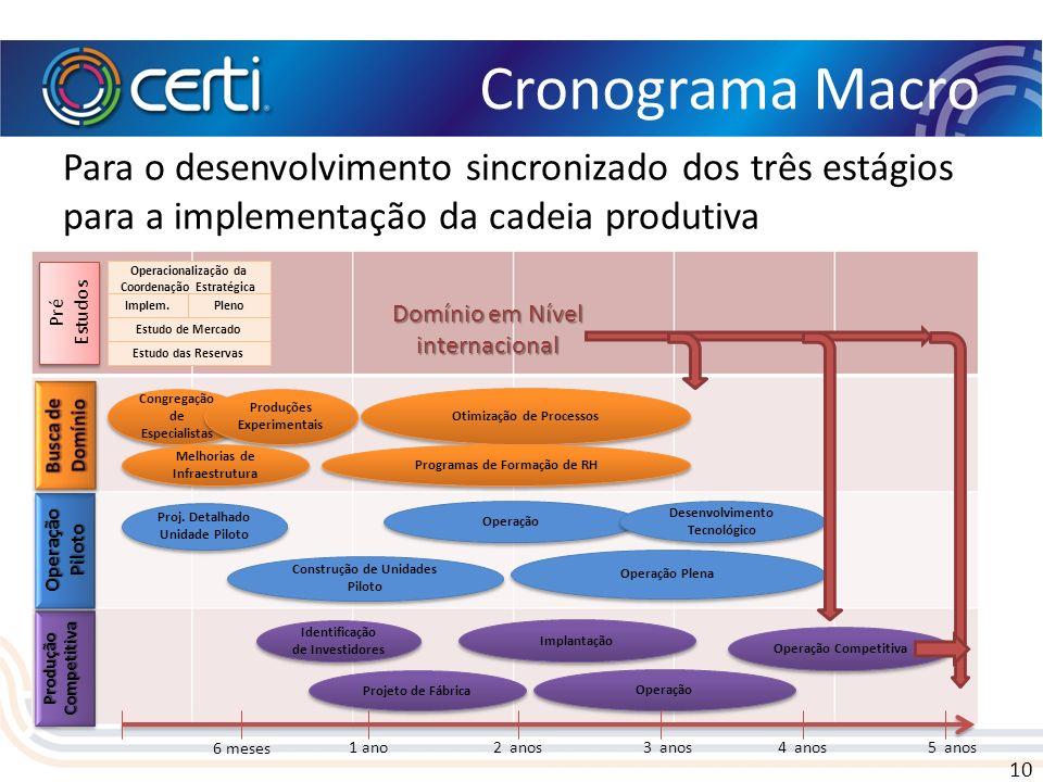 10 Cronograma Macro Para o desenvolvimento sincronizado dos três estágios para a implementação da cadeia produtiva 6 meses 1 ano2 anos3 anos4 anos5 an