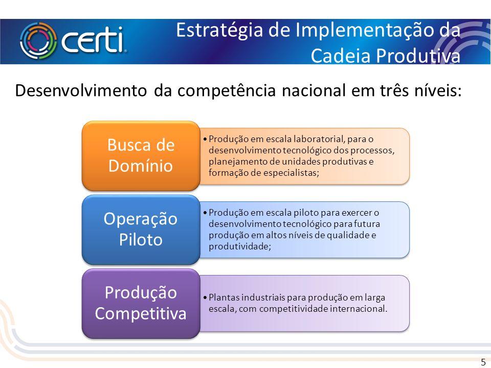 5 Estratégia de Implementação da Cadeia Produtiva Desenvolvimento da competência nacional em três níveis: Produção em escala laboratorial, para o dese