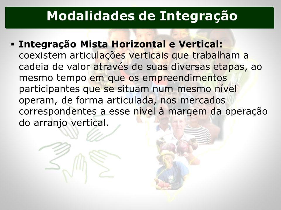 Modalidades de Integração Integração Mista Horizontal e Vertical: coexistem articulações verticais que trabalham a cadeia de valor através de suas diversas etapas, ao mesmo tempo em que os empreendimentos participantes que se situam num mesmo nível operam, de forma articulada, nos mercados correspondentes a esse nível à margem da operação do arranjo vertical.