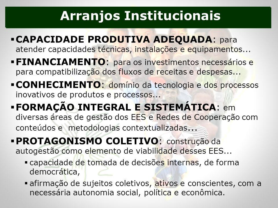 Arranjos Institucionais CAPACIDADE PRODUTIVA ADEQUADA: para atender capacidades técnicas, instalações e equipamentos...