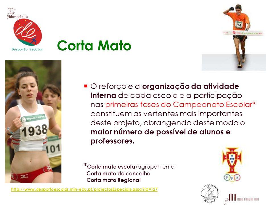 O reforço e a organização da atividade interna de cada escola e a participação nas primeiras fases do Campeonato Escolar* constituem as vertentes mais