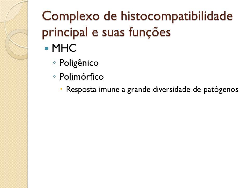MHC Poligênico Polimórfico Resposta imune a grande diversidade de patógenos Complexo de histocompatibilidade principal e suas funções