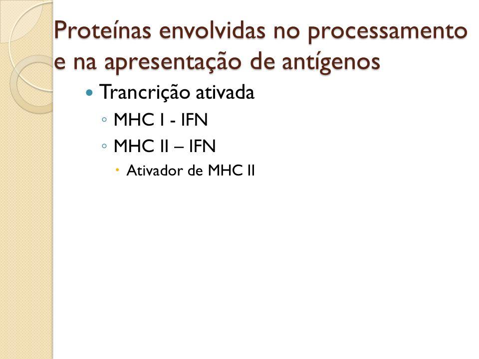 Trancrição ativada MHC I - IFN MHC II – IFN Ativador de MHC II Proteínas envolvidas no processamento e na apresentação de antígenos