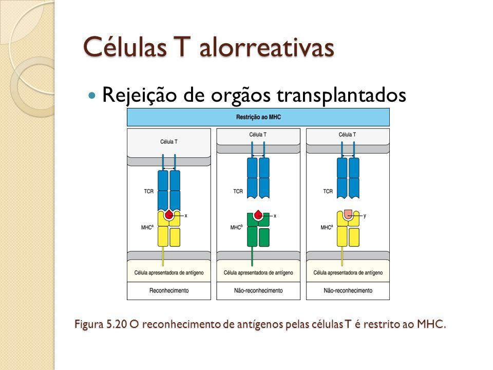 Células T alorreativas Rejeição de orgãos transplantados Figura 5.20 O reconhecimento de antígenos pelas células T é restrito ao MHC.