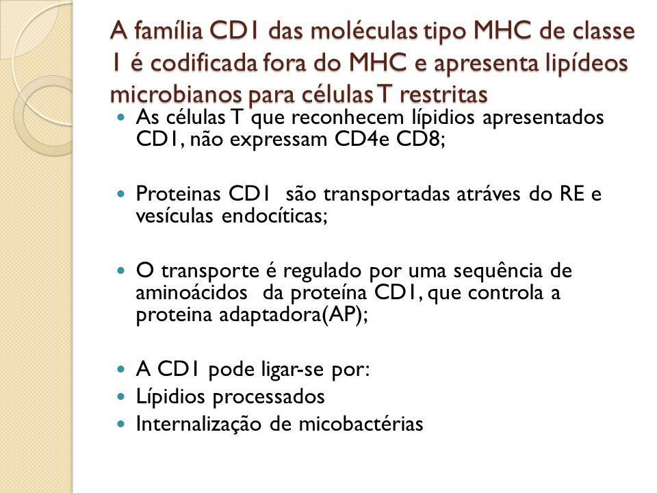 A família CD1 das moléculas tipo MHC de classe 1 é codificada fora do MHC e apresenta lipídeos microbianos para células T restritas As células T que r